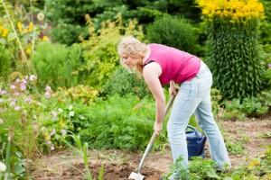 Meinen Zwergpinscher im eigenen Garten vergraben. Worauf muss ich achten?